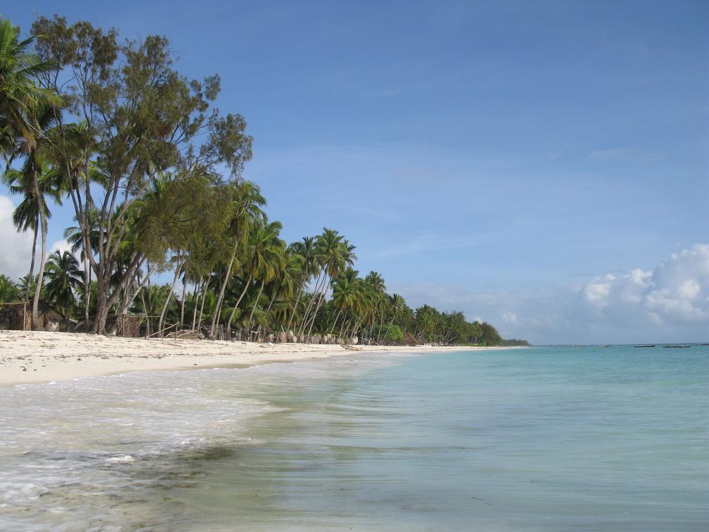 Spiaggia Palme Zanzibar -